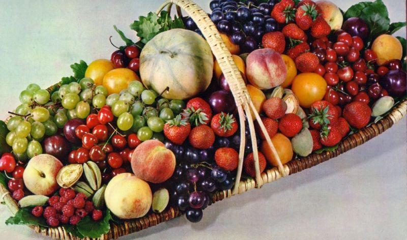 fruitsgd.jpg